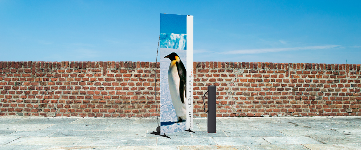 Outdoor Penguin